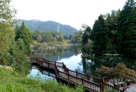 Simingshan National Forest Park