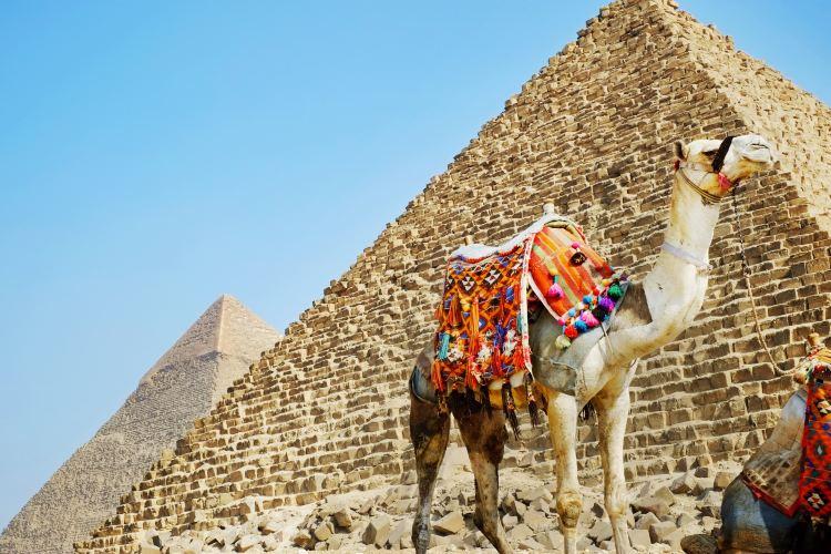 ギザの大ピラミッド1