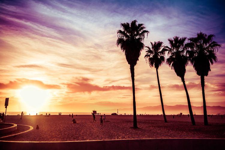 Venice Beach1