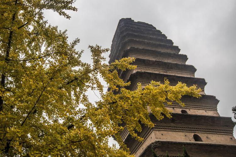 Little Wild Goose Pagoda (Jianfu Temple)1
