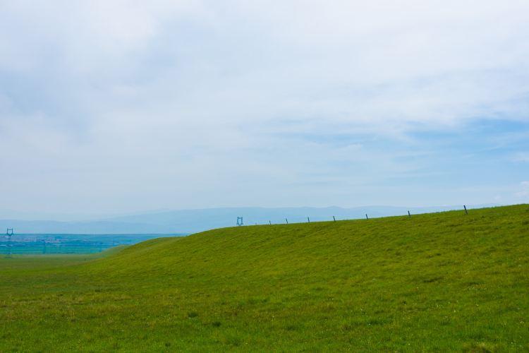 金銀灘草原2