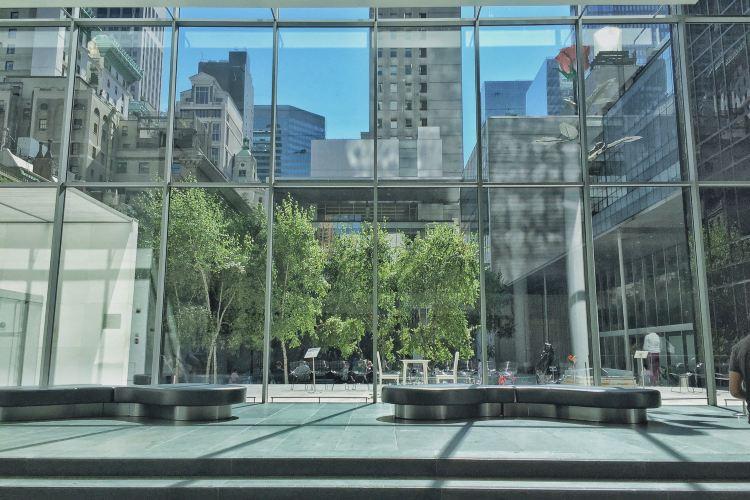 紐約現代藝術博物館1