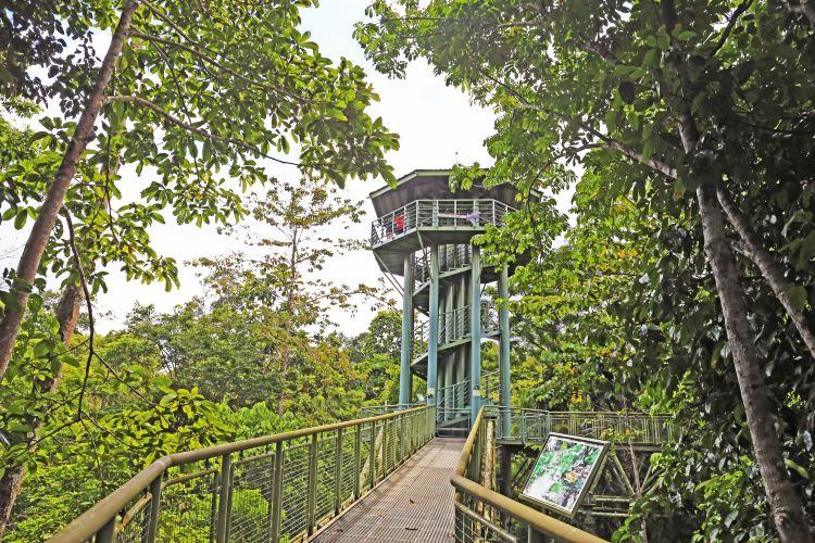 山打根雨林探索中心4