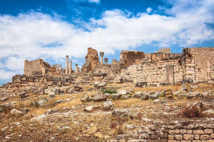 Ruines de Carthage3