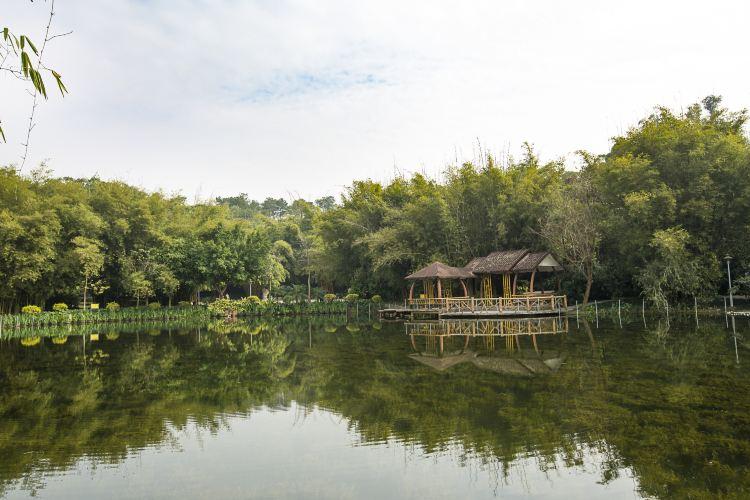 Shishan Park3