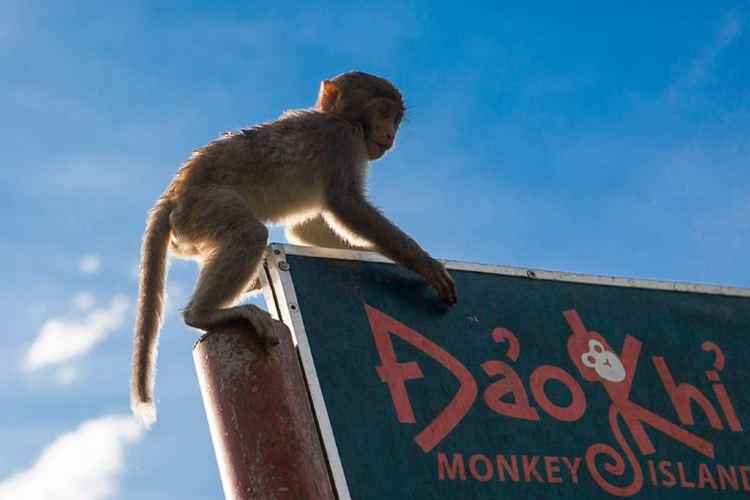 Monkey Island2