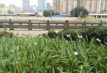 Guangminggang Park