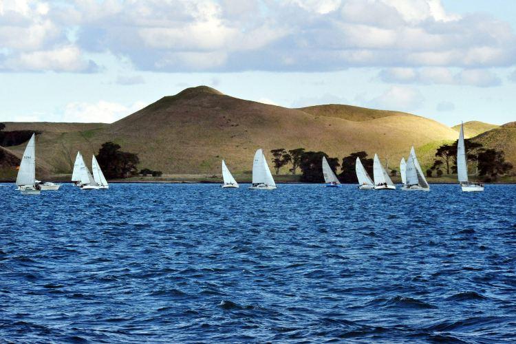 懷希基島4