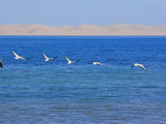 青海湖沙島