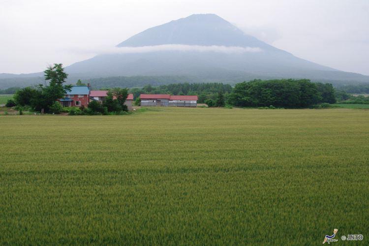 有珠火山3