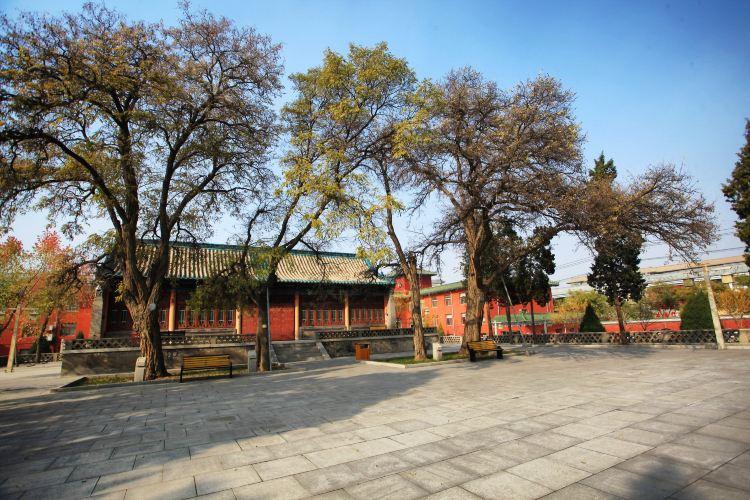 Chengtian Temple Pagoda2
