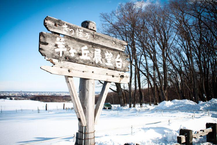 히츠지가오카 전망대1
