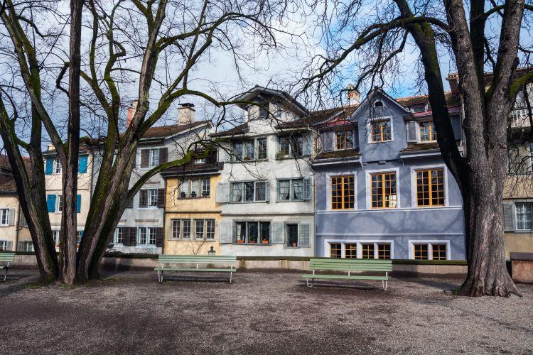 Lindenhof1