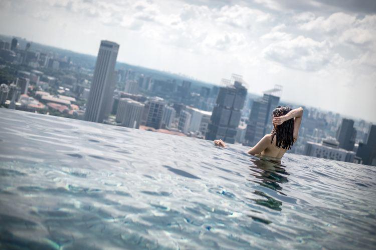 Marina Bay Sands Hotel Infinity Pool1