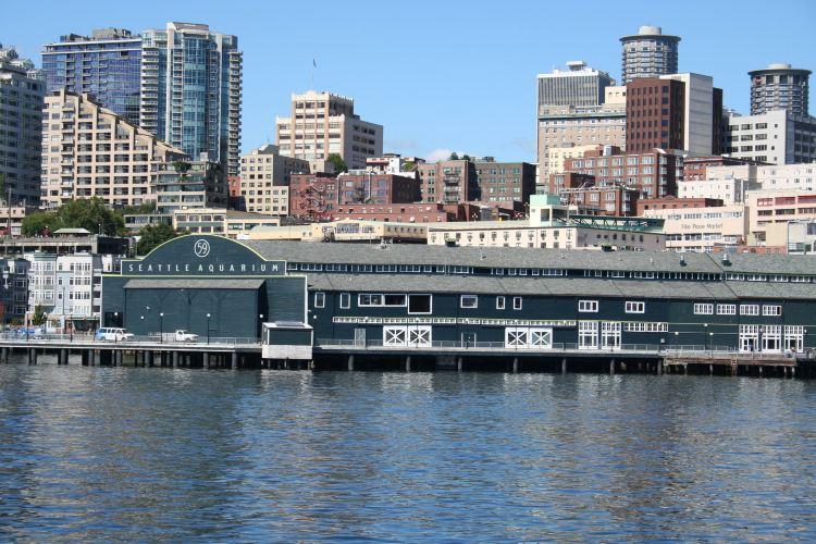 Seattle Aquarium2