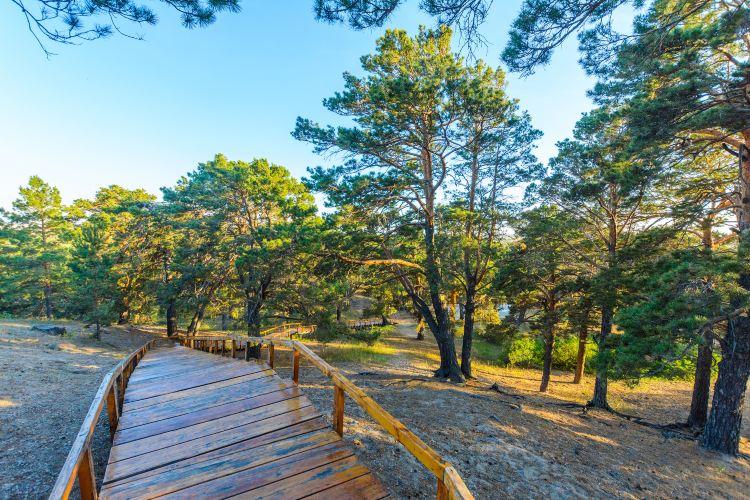 하이라얼 서산국립삼림공원1