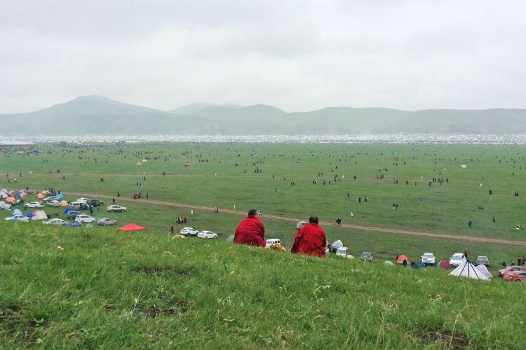 Ganjia Grassland4