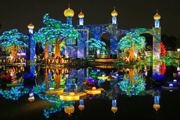 Dubai Garden Glow1