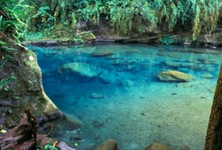 Danaiku Nature Ecological Park