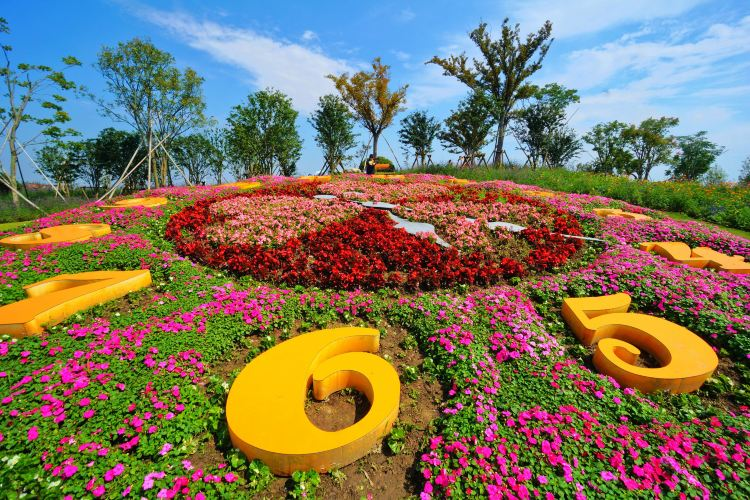 Zhoupu Sea of Flowers