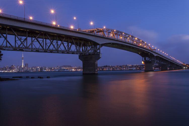 Auckland Harbour Bridge3