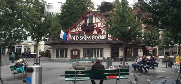 Old Swiss House2
