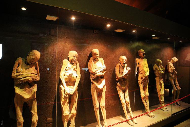 Museo De Las Momias1