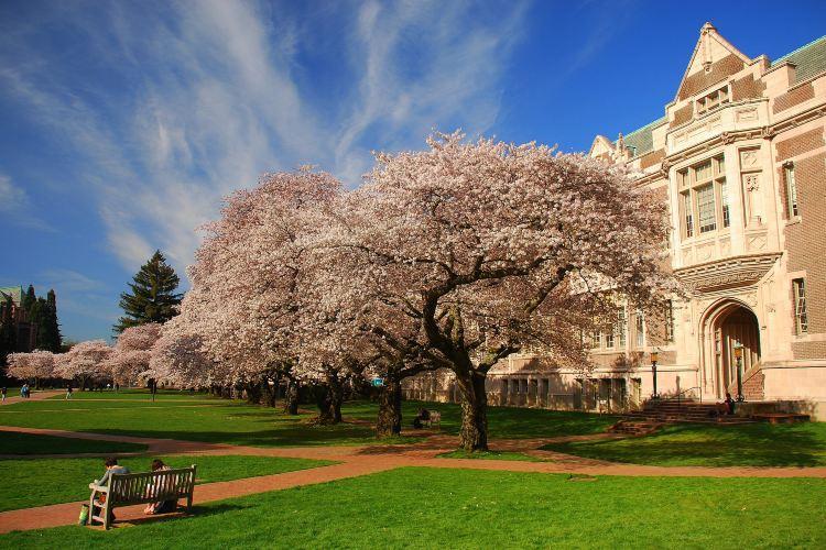 University of Washington1