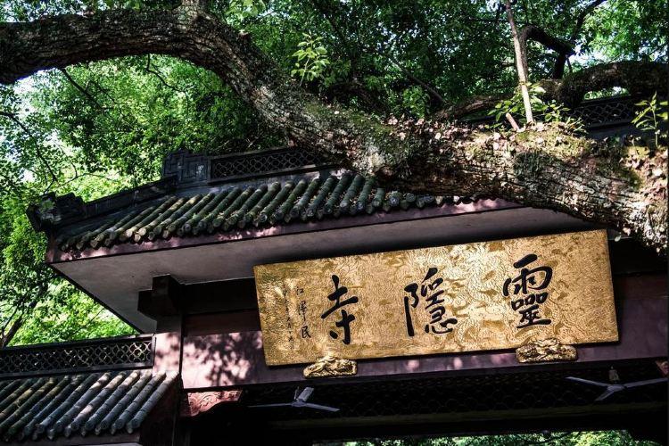 Hangzhou Lingyin Temple and Feilai Peak Scenic Spot2