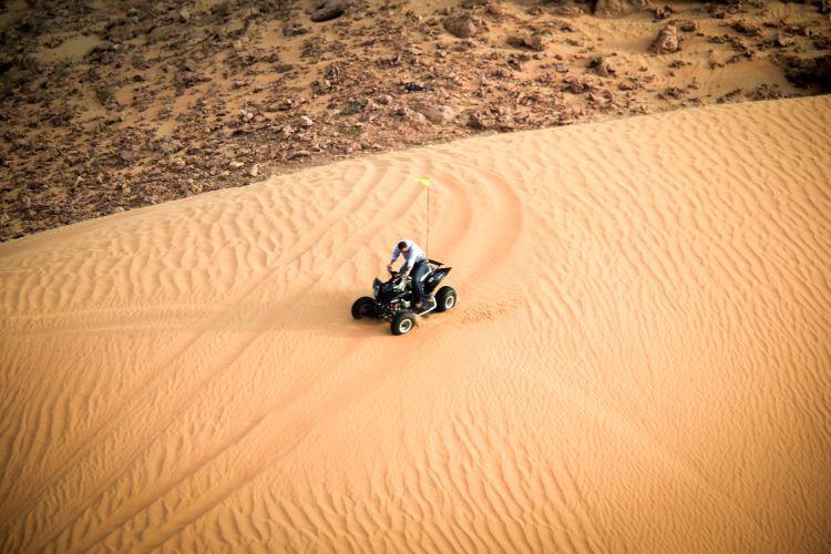 Desert Safari1