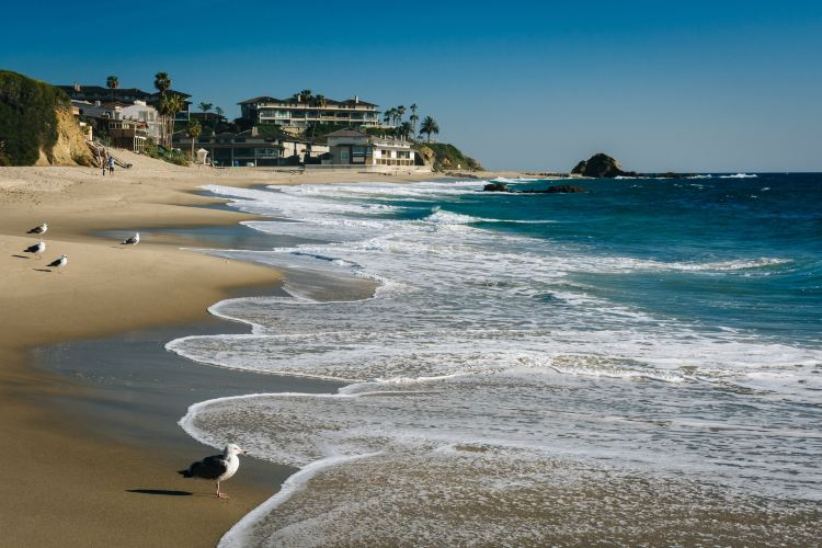 Laguna Beach4