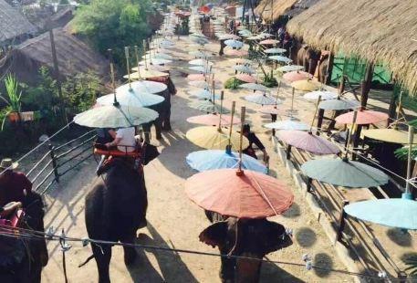 Chiang Mai Town