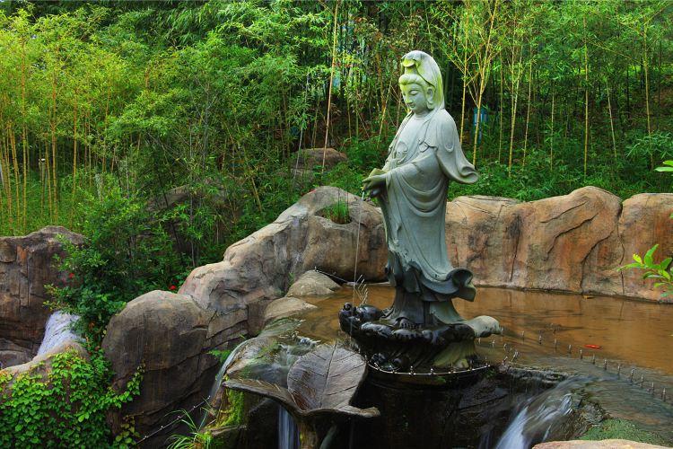 "Jiulong (""Nine Dragon"") Valley Scenic Area2"