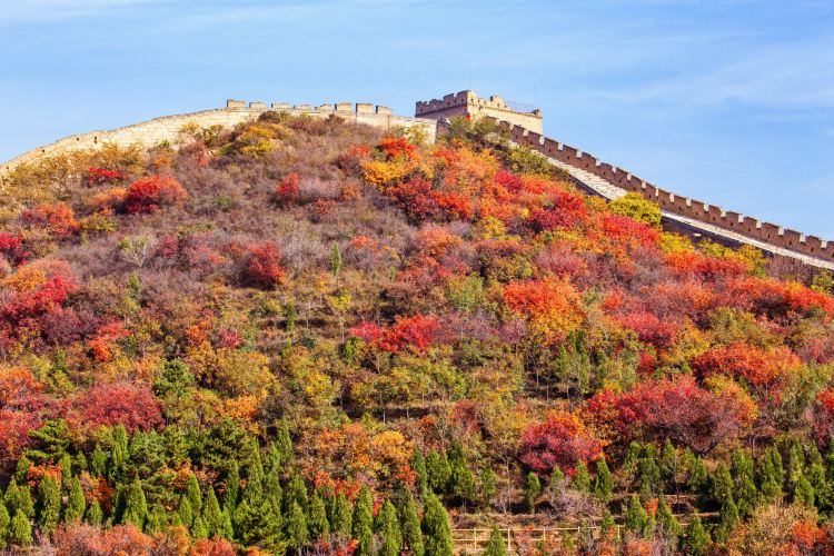 Badaling Ancient Great Wal2