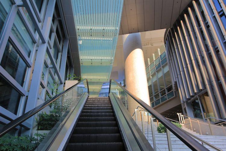 香港大學3