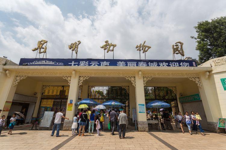 쿤밍 동물원1