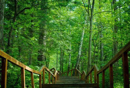 Huoshankou National Forest Park