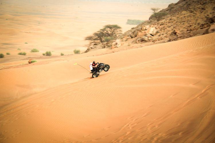 Desert Safari2