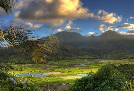 Lawai Valley