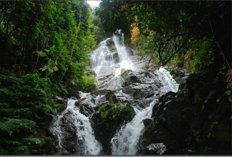 Wulaoshan National Forest Park