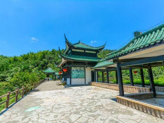 이싱 주하이(의흥 죽해)