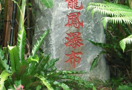 Dragon Phoenix Waterfall