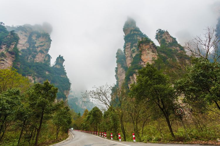 Zhangjiajie National Forest Park2