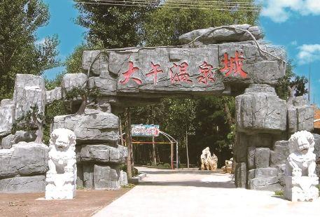 Xushui Dawu Hot Spring