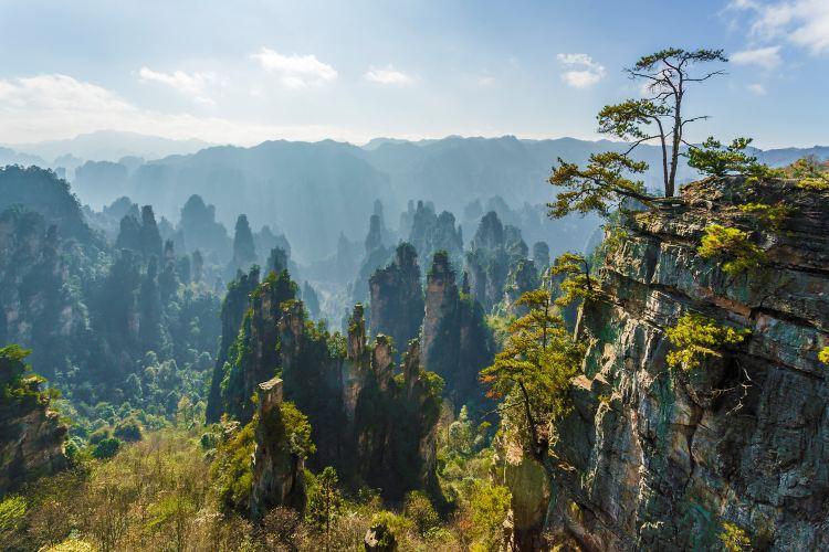 Tianzi Mountain2