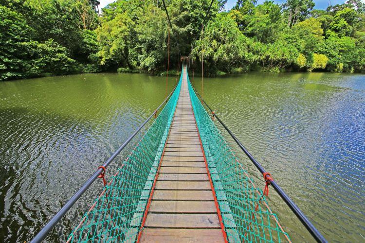 山打根雨林探索中心2
