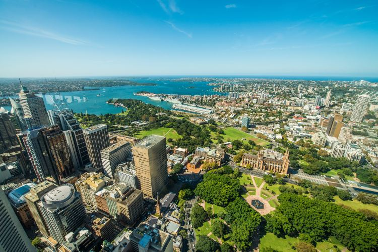 Sydney Tower2