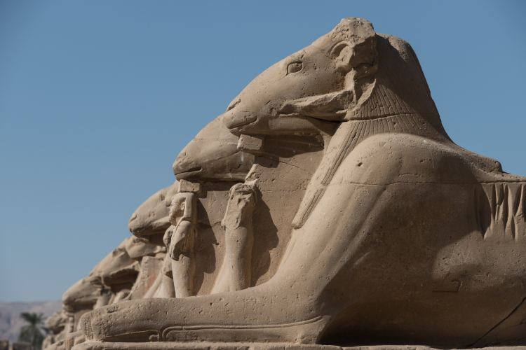 Karnak Open Air Museum4