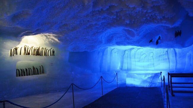 Glacier Palace