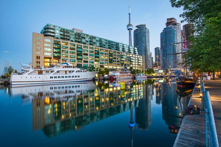 Toronto Waterfront1